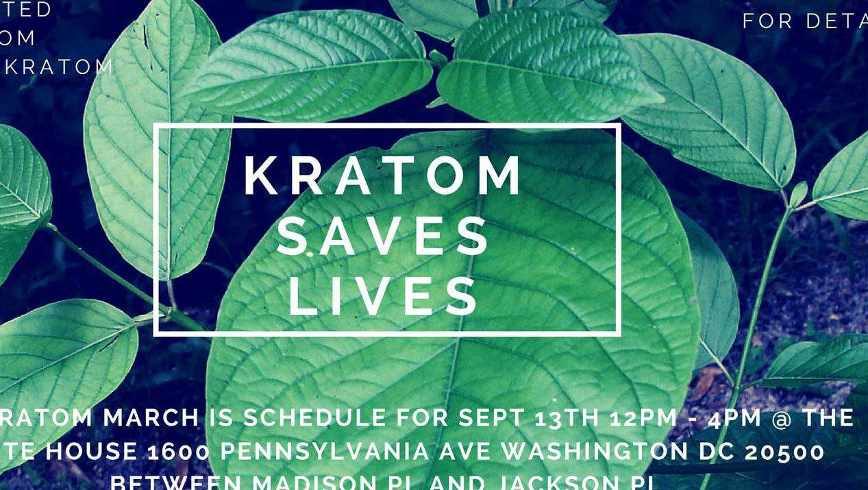 Buy Kratom in Wilmington NC